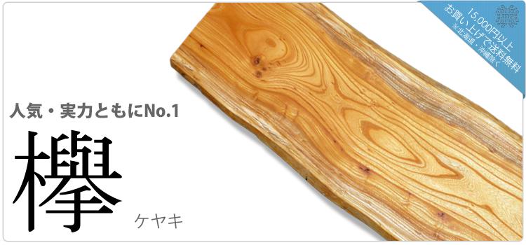 欅/ケヤキ「人気実力ともにNo.1」